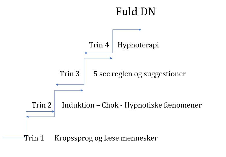 dn-uddannelse-2